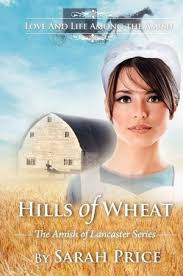233 best amish books images on books to read amish