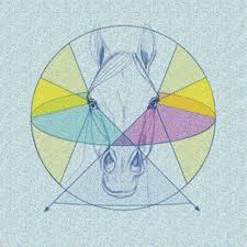 Are Horses Color Blind Understand Your Horse U0027s Eyesight Horse U0026rider Western Training