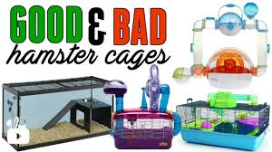 Hamster Cages Cheap Good U0026 Bad Hamster Cages Youtube