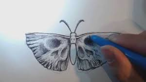 beanie draws a design of a moth butterfly with skull wings