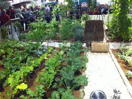 Raised Gardens You Can Make by Apartment Vegetable Gardening Ideas You Can Get More Details By