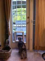sliding glass door installation custom doors with doggie door jeld wen steel and fiberglass