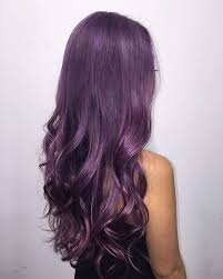 best 25 purple hair ideas on pinterest violet hair dark purple