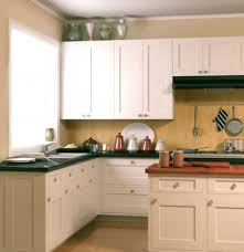 Kitchen Cabinet Door Colors Raised Panel Kitchen Cabinet Doors Image Collections Glass Door