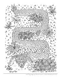 stress relief coloring book pages grown ups dragons craft