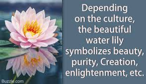 meanings unveiled what does a water really symbolize