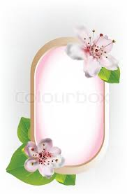 beautiful frame with cherry blossoms design and green leaves