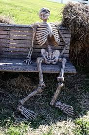 Skeleton Meme - funny skeleton waiting pictures google search skeletons