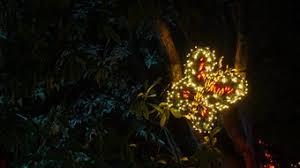 Bellevue Botanical Garden Lights Photos Garden D U0027lights At Bellevue Botanical Garden 2016 King5 Com