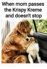 Krispy Kreme Memes - 25 best memes about krispy kreme krispy kreme memes