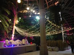 warm white light canopy for indian wedding at sefton park