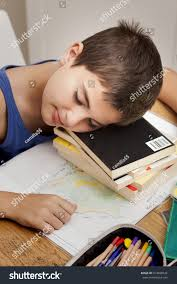 lazy boy sleeping on books stock photo 313608524 shutterstock