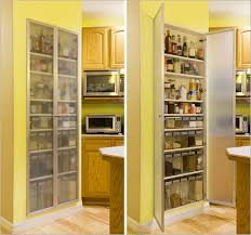 pantry ideas for kitchen small kitchen pantries kitchen design ideas