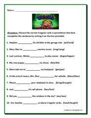 collective noun worksheets collective nouns worksheet