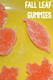 best 25 how to make gummies ideas on pinterest gummy bears