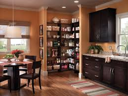 Kitchen Cabinets Pantry Ideas 30 Best Pantries Images On Pinterest Pantry Ideas Kitchen Ideas