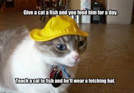 Meme Lol Com Wp Content - lol cats demotivationals etc page 58 theshaveden