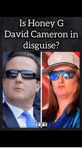 David Cameron Memes - ls honey g david cameron in disguise y pt david cameron meme on me me