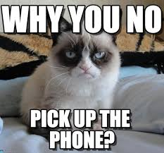 Why You Not Meme - why you no grumpy cat meme on memegen