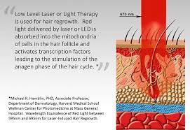 igrow laser hair rejuvenation system amazon co uk beauty