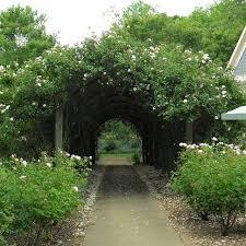create a magical secret garden hgtv related to room designs garden