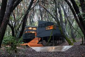 forest house the forest house in northern california bthinx