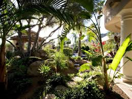 tropical landscaping pictures best tropical landscape styles