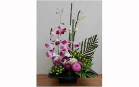 orchid flower arrangements orchid flower arrangement chocaric