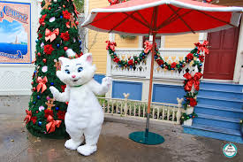 disneyland paris christmas season pictorial update pictures by