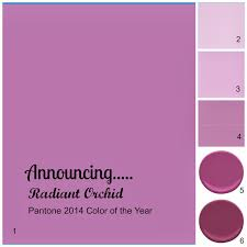 Sherwin Williams Paint Of The Year by Lisa Mende Design My Top 5