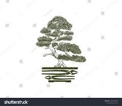 what does a bonsai tree symbolize best bonsai images 2018