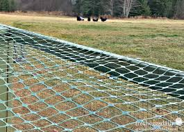 choosing the right fencing for your chicken coop run or garden