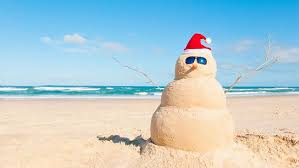 what to do for christmas in new zealand backpacker guide new zealand