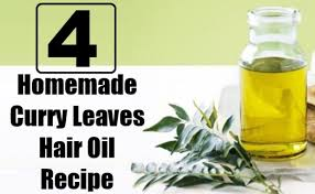 for hair image gallery of curry leaves for hair growth