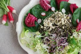 comment cuisiner les pousses de soja pousses de soja maison
