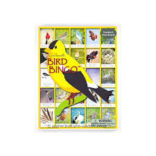 birds iview window clings backyard birds identification