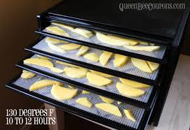 home depot excalibur dehydrator black friday how to dehydrate mangoes