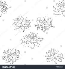 beautiful pattern seamless beautiful pattern flowers on white stock vector 622497440