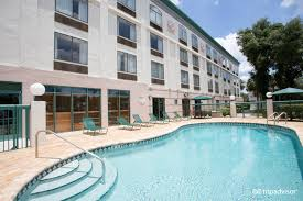 busch gardens tampa hotels nearby home outdoor decoration