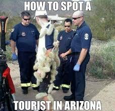 Arizona Memes - 106 best meanwhile in arizona images on pinterest ha ha so