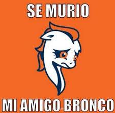 Memes De Los Broncos - los memes del super bowl xlviii