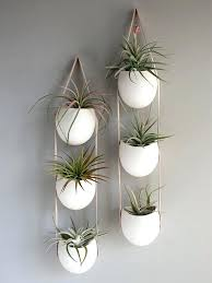 plant wall hangers indoor wall planters hanging indoor plants ideas wall planters hanging