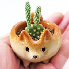 desk cactus siros funny animals shiba inu shaped cactus pot noveltystreet