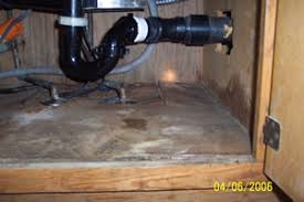 mold under kitchen sink mold removal in huntington beach and neighboring communities by