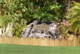 Rock For Garden by Best Landscape Ideas With Decorative Rock For Garden Front Yard