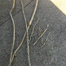 gardening and making tree branch trellis mixed kreations