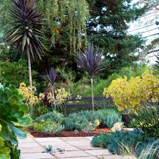Landscape Design Backyard Ideas by Front Lawn Ideas Sunset