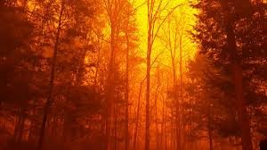 Large Wildfire Definition by 3 People Dead Hundreds Of Buildings And Homes Destroyed By Ragi