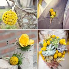billy balls billy flowers weddings by lilly