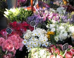 Flower Shops by Online Flower Shopping